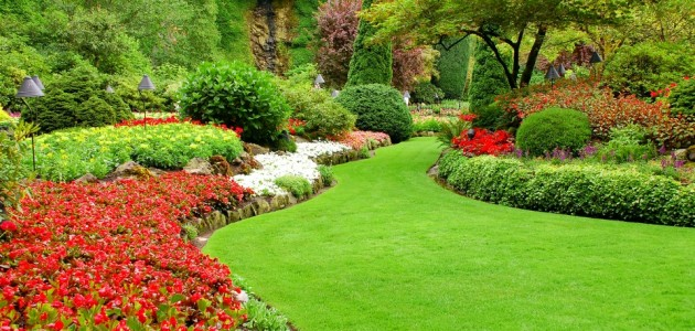 Image gallery landscaping services for Lawn and garden services